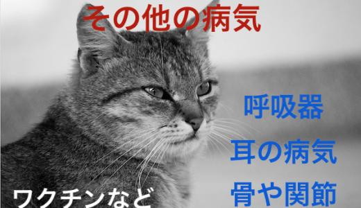 猫の消化器や呼吸器、関節疾患etc病気まとめ!ワクチンなども!