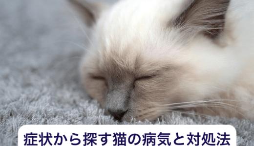 症状から探す猫の病気と対処法について!