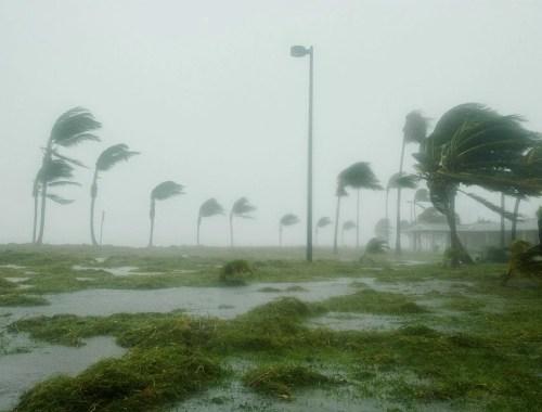 huragan, wiatr halny