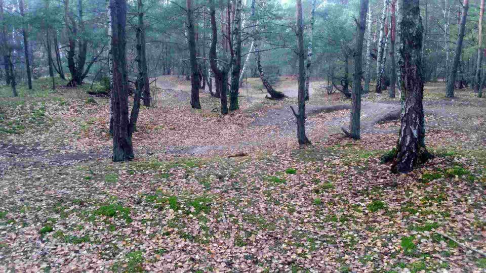 Uroczysko lublinek, teren krosowy do biegania w lesie