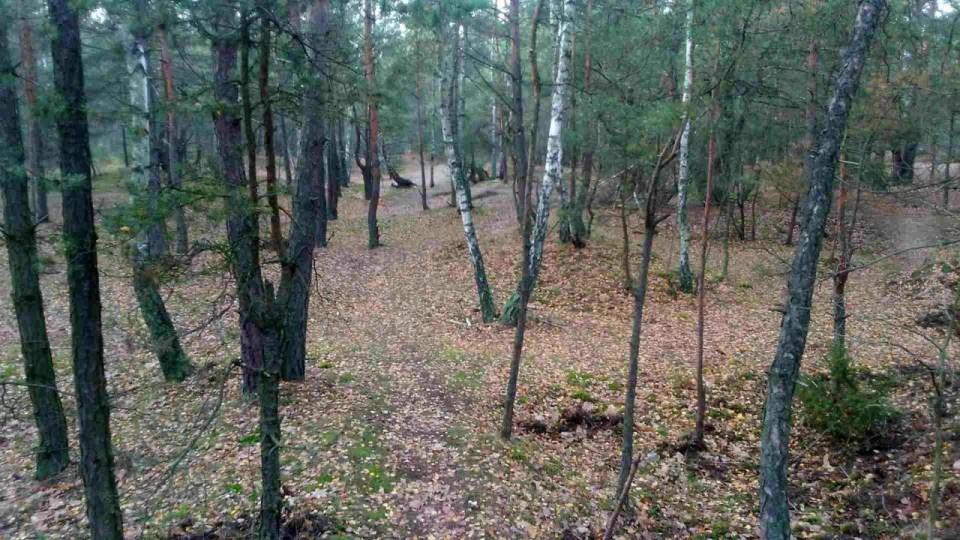 teren krosowy na uroczysku lublinek w Łodzi gdzie robić podbiegi, krosy