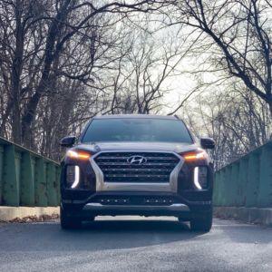 Hyundai Palisade Exterior 9 300x300
