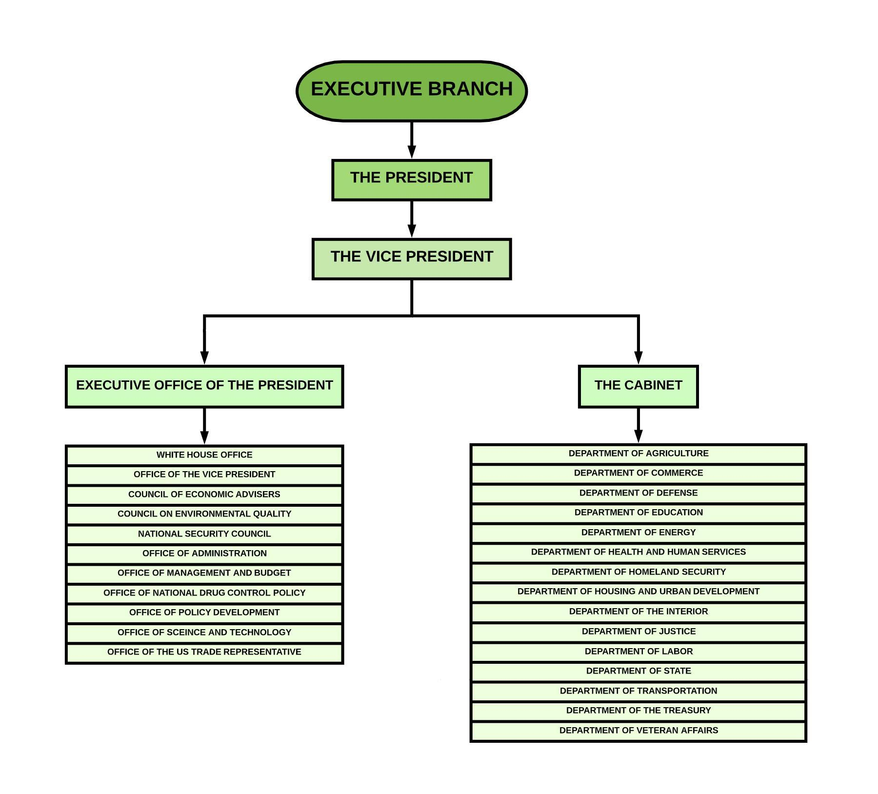 Each Branch Of Government Has A Clear Hierarchy For Its
