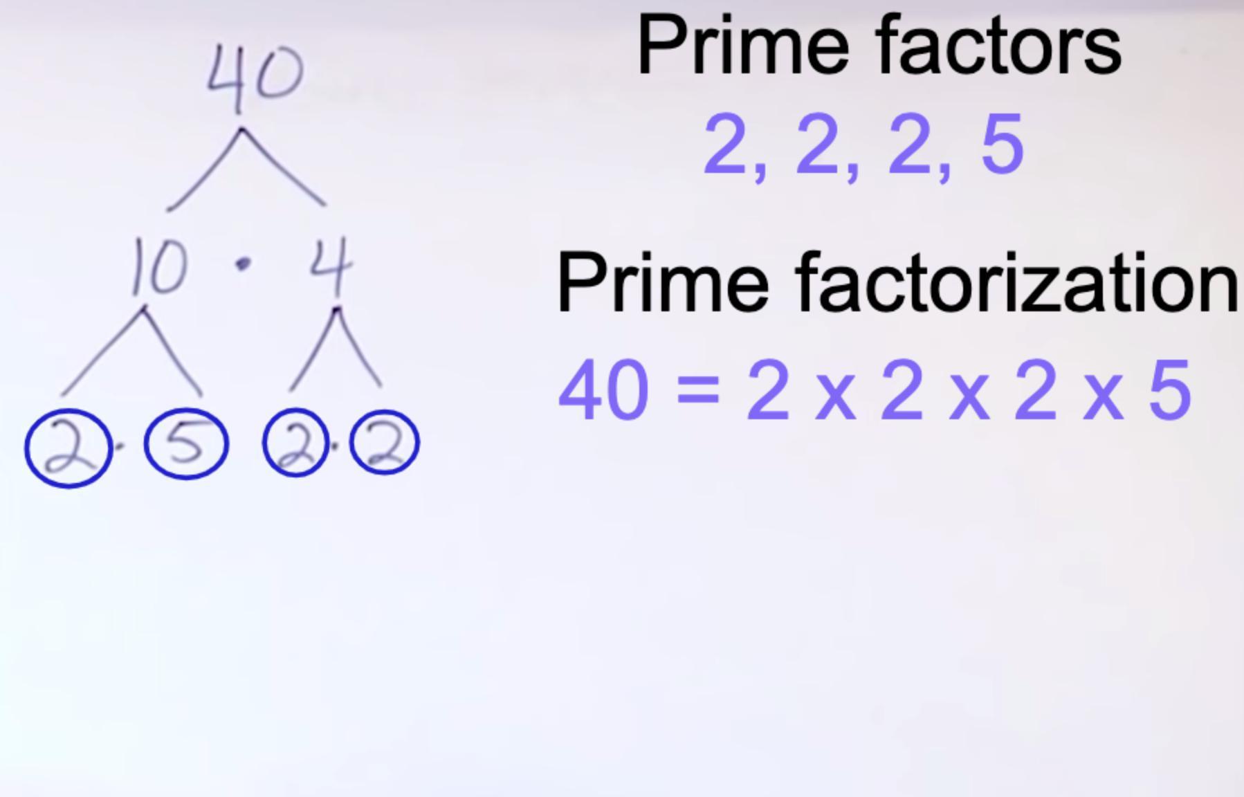 Prime Factorization For 40