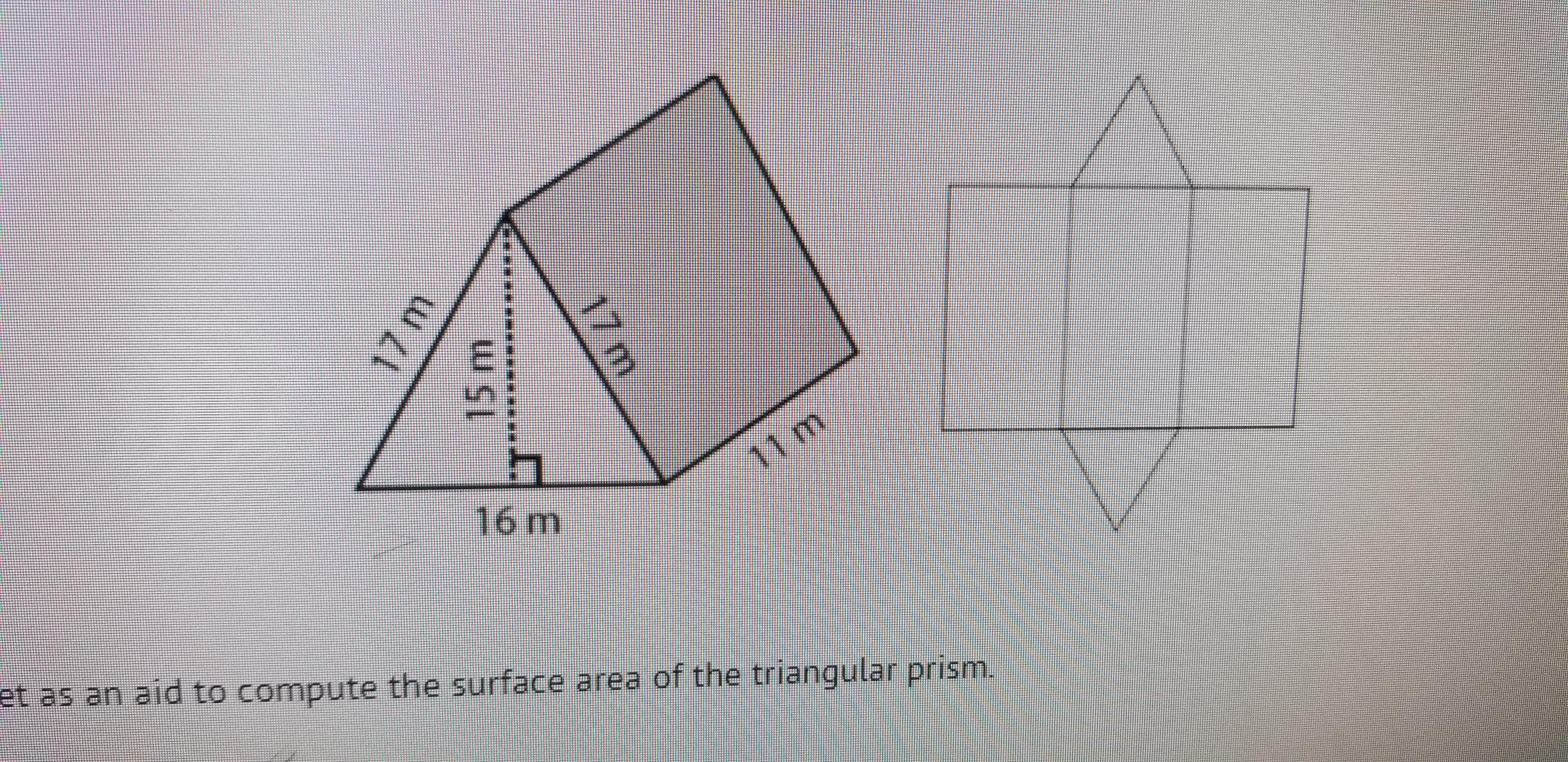 Use The Net As An Aid To Compute The Surface Area Of The