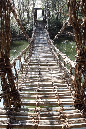 JAPANESE FOREST: Old suspension bridge, constructed the plant vine Stock Photo