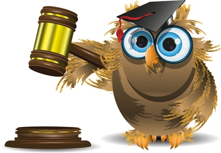 JUDGE ICONS: illustration of an owl in a cap with a judge gavel