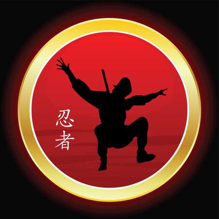 ninjutsu: ninja