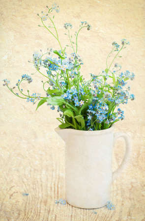 Bouquet of forget-me-nots flowers in  a white vase on a grunge  background Stock Photo - 19789320
