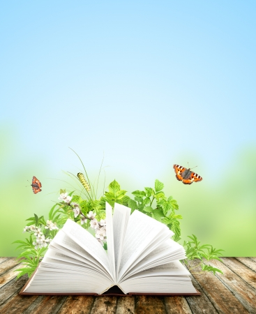 Book of nature on blue background Stock Photo - 18845921