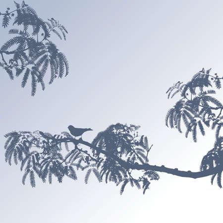Bird on branches Vector
