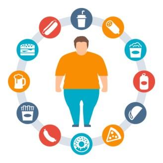 Image result for junk food obesity