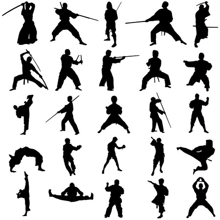 ninja: set of fighter
