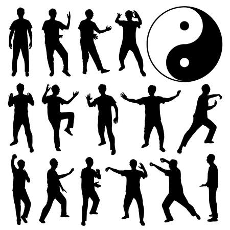 tai chi: Martial Art Kung Fu Tai Chi Self Defense Exercise Fight Master People Man