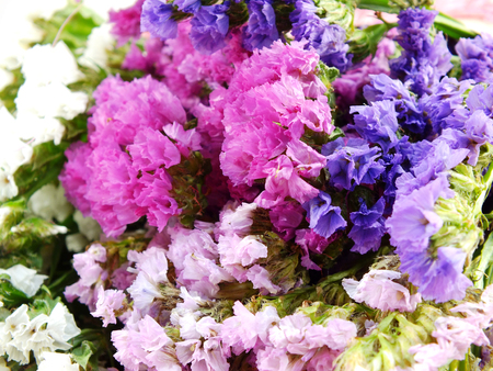 Beautiful Statice Flowers Bouquet Stock Photo  Picture And Royalty     beautiful statice flowers bouquet Stock Photo   53692232