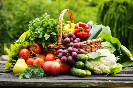 Fresh organic vegetables in wicker basket in the garden Stock Photo - 20483481