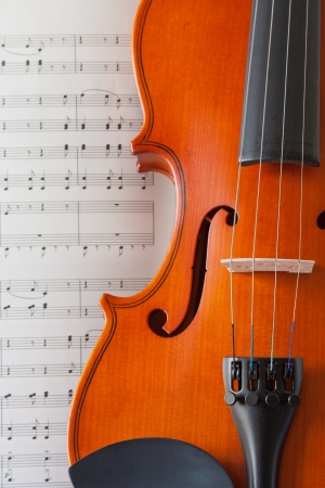 violin and note Stock Photo - 20986249