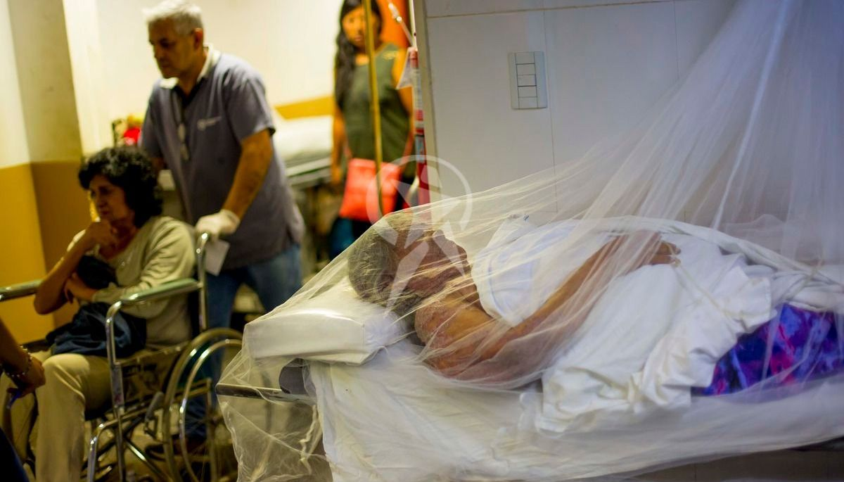 Dengue: 358 casos confirmados y 1.100 fichas de pacientes con fiebre