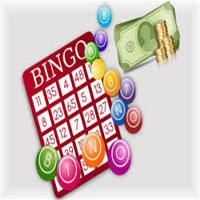Catalogo del Bingo del Dinero