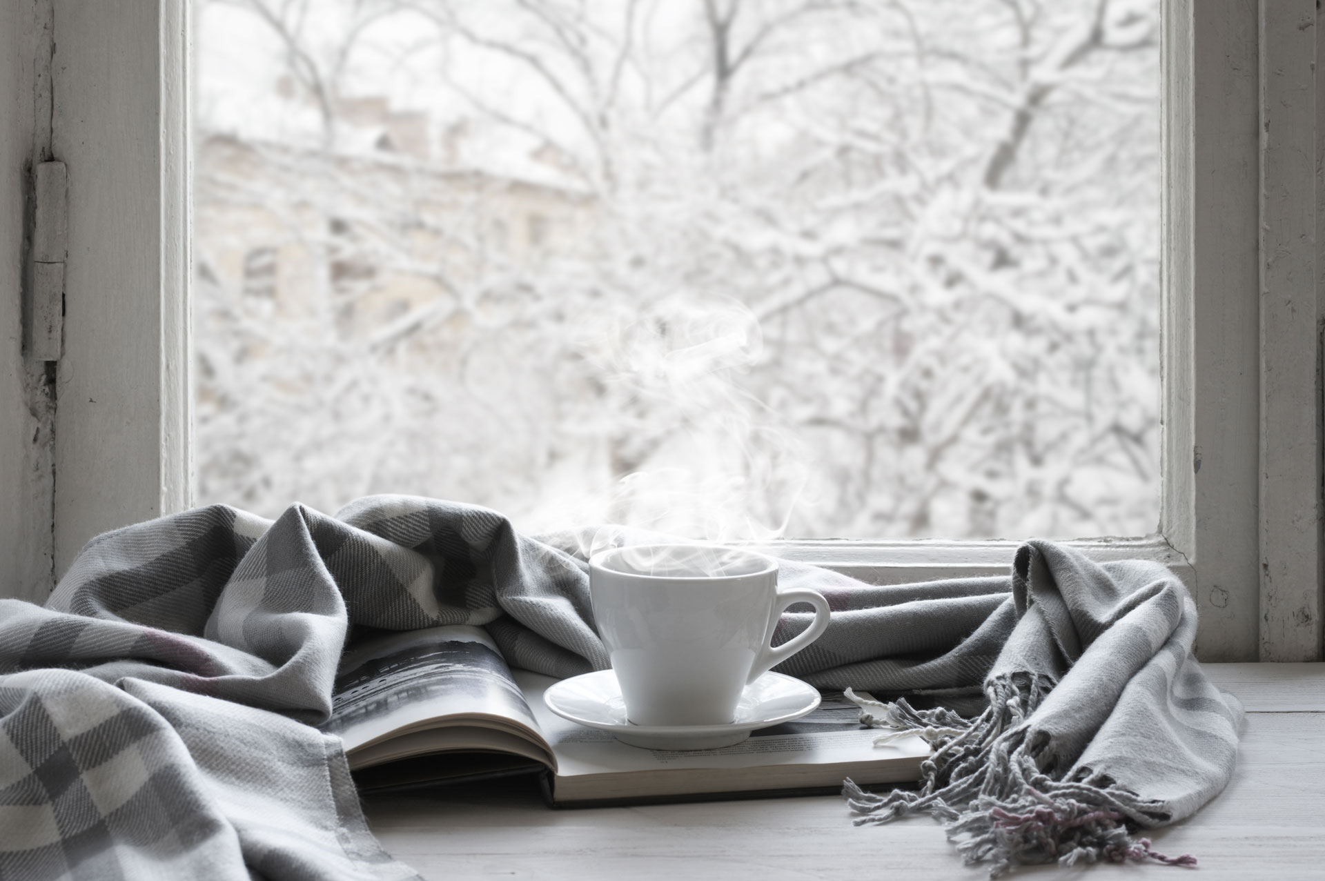 Baby, It's Cold Outside: Keep Warm During this Arctic Tundra