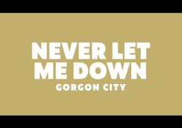 DOWNLOAD MP3: Gorgon City & Hayley May - Never Let Me Down