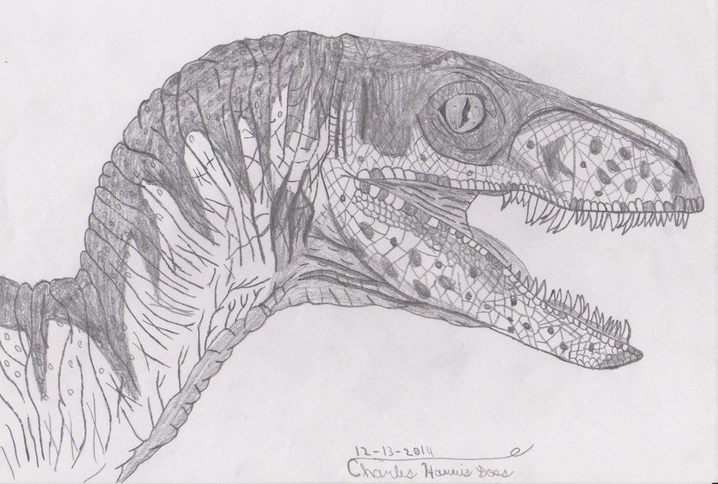 Raptor Sketch Stan Winston School Of Character Arts Forums
