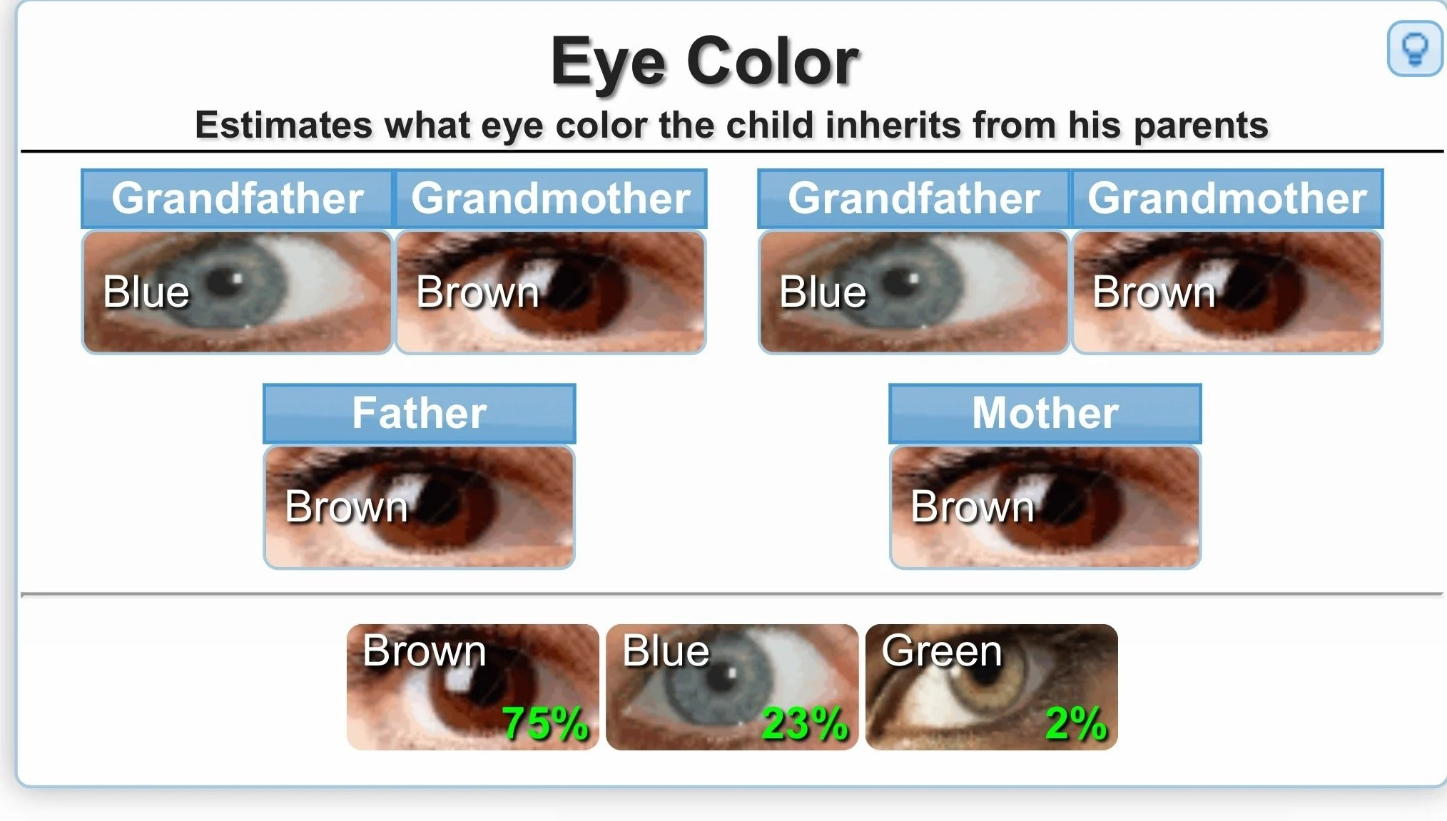 Genetics Calculator For Eye Color Etc