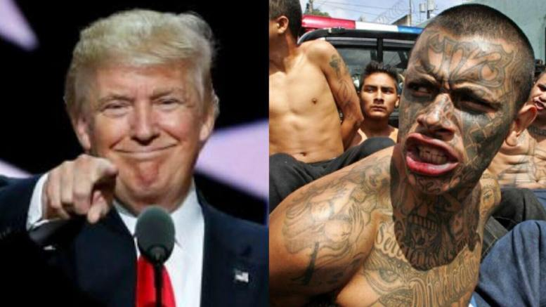 Congress is about to make it more difficult for MS-13 to enter U.S. And once here, easier to remove. Congress will be untying law enforcement's hands placed by Obama administration regulations. Image Source Reuters and AFP.