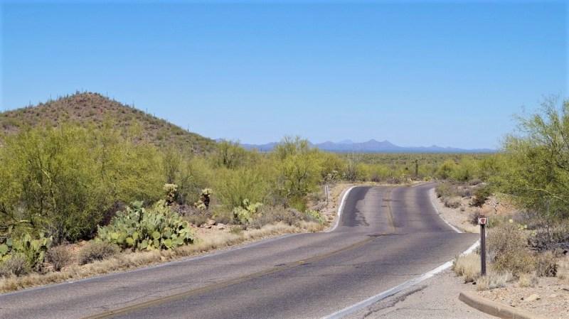 Landschaft von Tucson
