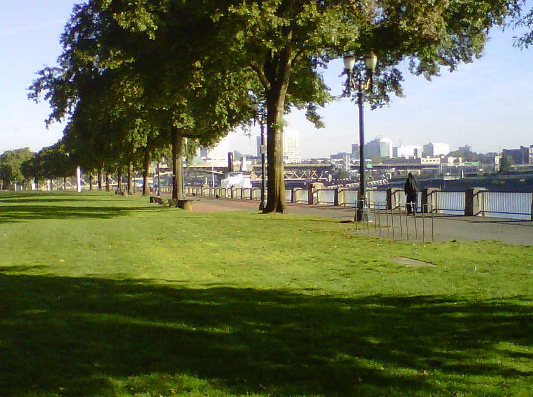 Harbor Drive today (otherwise known as Waterfront Park.)