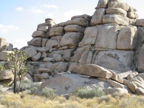 Eine typische Felsformation im Joshua Tree Nationalpark