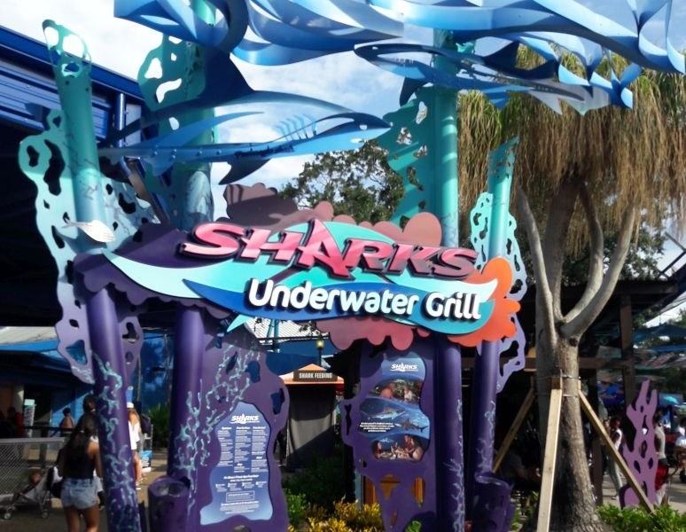 Disneyland & Seaworld Orlando, FL