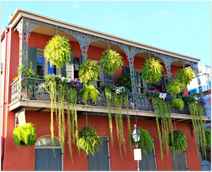 Plants-aplenty-on-this-French-Quarter-dwelling