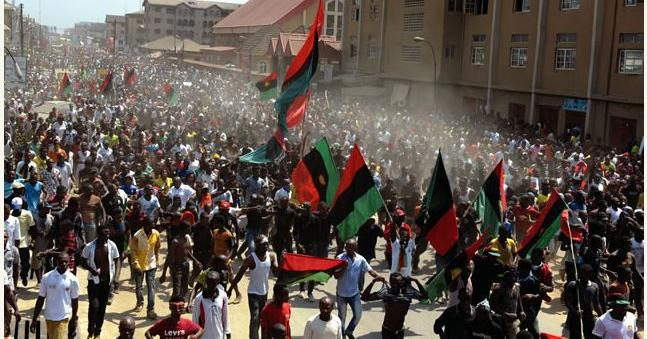 Nigeria, Biafra agitators and the Animal Farm. By Chido Nwangwu