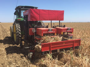 USA Garlic Machinery - Garlic Harvest & Post Harvest Machines