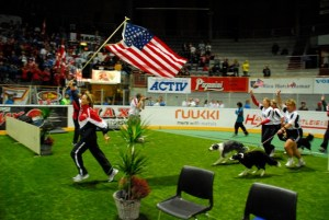2007 Large Dog Silver Medal Victory Lap