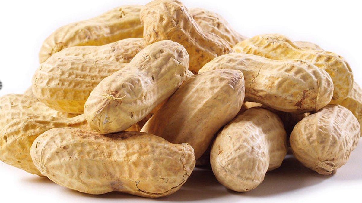 cara membuat roti kacang