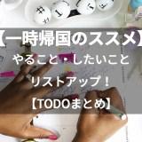 【一時帰国のススメ】日本滞在中にするべきこと、したいことリストアップ【まとめ】