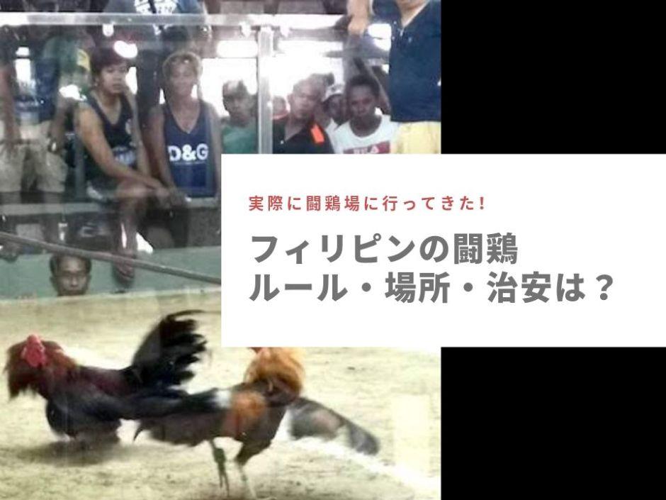【フィリピンの闘鶏】実際に行ってきたのでルールと掛け金、闘鶏場の場所(マニラ・セブ)などを詳しく紹介するよ!
