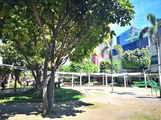 マニラBGCの街路樹