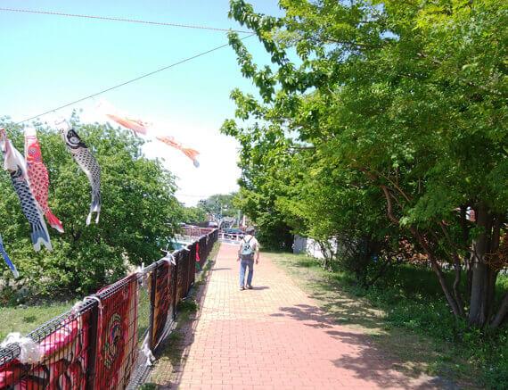 東大和市空堀川沿いを歩く母の後ろ姿