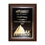 USAT-Award-Gamber-2010