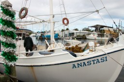 Historic Sponge Docks, Tarpon Springs, FL. www.usathroughoureyes.com