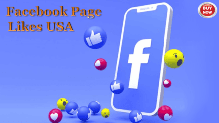 Facebook-page-Verifecation