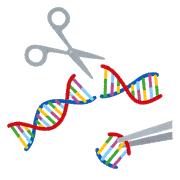 【生命倫理】ヒト受精卵にゲノム編集「遺伝性疾患など基礎研究の指針案」了承(政府調査会)