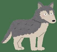 【動物】オオカミと犬を交配、「オオカミ犬」が住宅から逃走! かみつく恐れも・・・