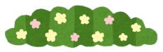 【科学一般】「雑草という草はない」生物学者・昭和天皇の姿 科博で生誕120年展