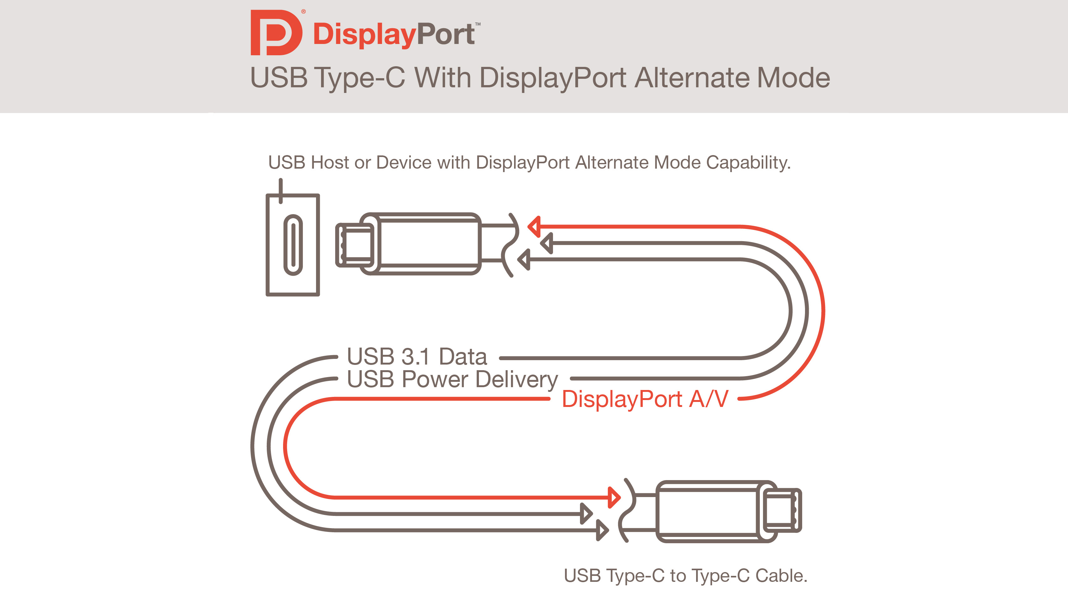Usb C Wiring Diagram