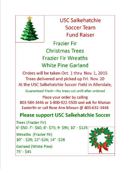 2015christmas tree flyer