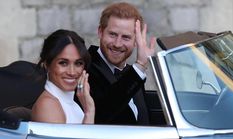 Meghan Markle Prince Harry Twins